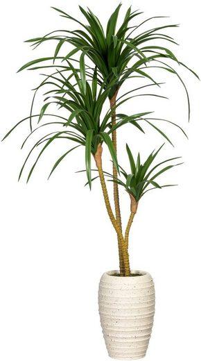 Künstliche Zimmerpflanze »Dracaena marginata« Dracaena marginata, Creativ green, Höhe 100 cm, in Keramikvase
