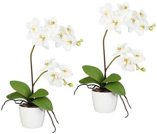 Kunstpflanze »Orchidee Phalaenopsis« Orchidee, Creativ green, Höhe 60 cm, im Keramiktopf