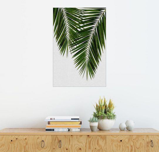 Posterlounge Wandbild, Palmblatt II