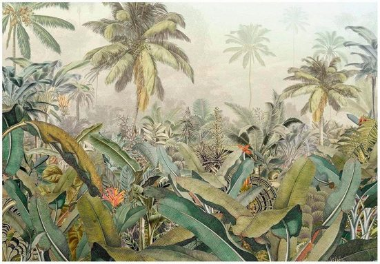 KOMAR Vliestapete »Amazonia 4er«