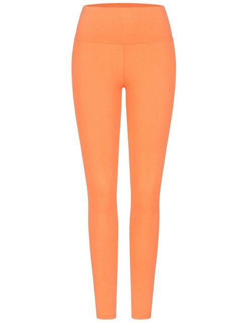 Hosen - Cotton Candy Leggings »SADE« mit körpernaher Passform › orange  - Onlineshop OTTO