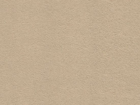 Teppichboden »SUPERIOR 1063«, Vorwerk, rechteckig, Höhe 9 mm, Feinvelours, 1-farbig, 500 cm Breite