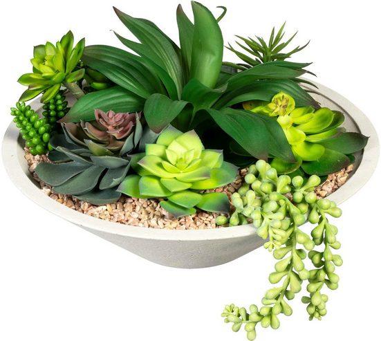 Künstliche Zimmerpflanze »Sukkulentenarrangement« Sukkulente, Creativ green, Höhe 20 cm, in Schale aus Naturmaterial