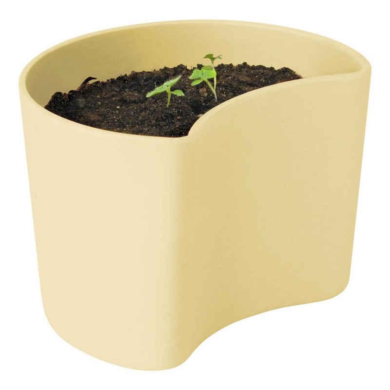RIG-TIG Anzuchttopf »YOUR TREE mit Samen Yellow«