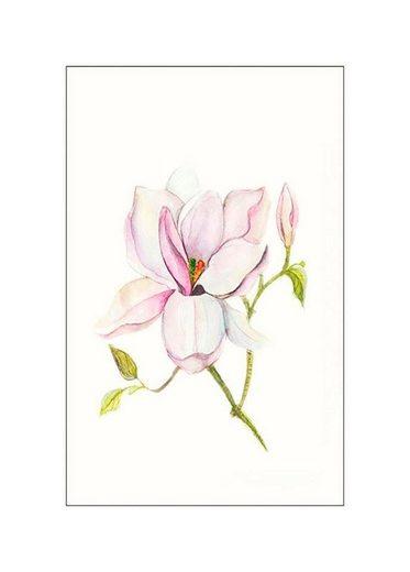 KOMAR XXL Poster »Magnolia Shine«