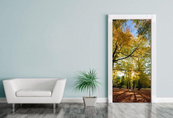 Bilderdepot24 Türtapete, Türaufkleber Blätterfall im Herbst, selbstklebendes Vinyl