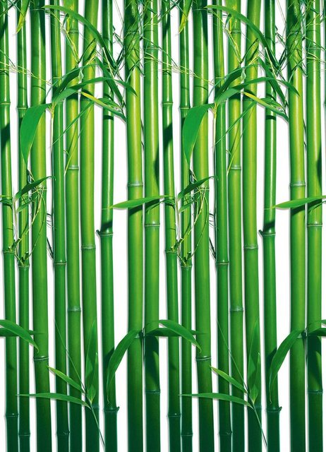 Home affaire Wandtapete, Bamboo, 183/254 cm