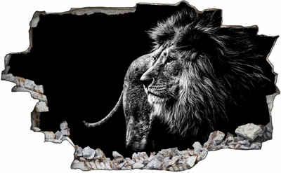 DesFoli Wandtattoo »Tier Fotografie Löwe Afrika Natur C1728«