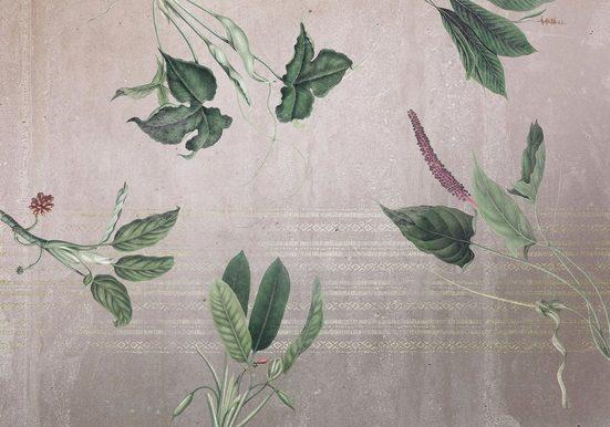 Komar Fototapete »Vliestapete Tropic Concrete«, glatt, bedruckt, geblümt, floral, realistisch, 400 x 280 cm