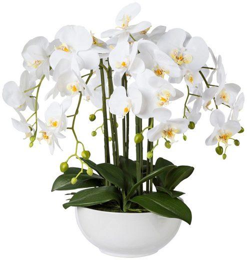 Kunstpflanze »Orchidee Phalaenopsis«, in Keramikschale, H: 54 cm
