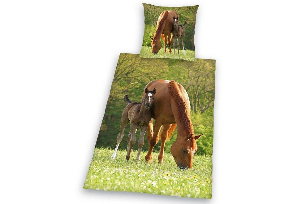 Kinderbettwäsche, Young Collection, »Pferd mit Fohlen«, für Pferdefreunde in grün
