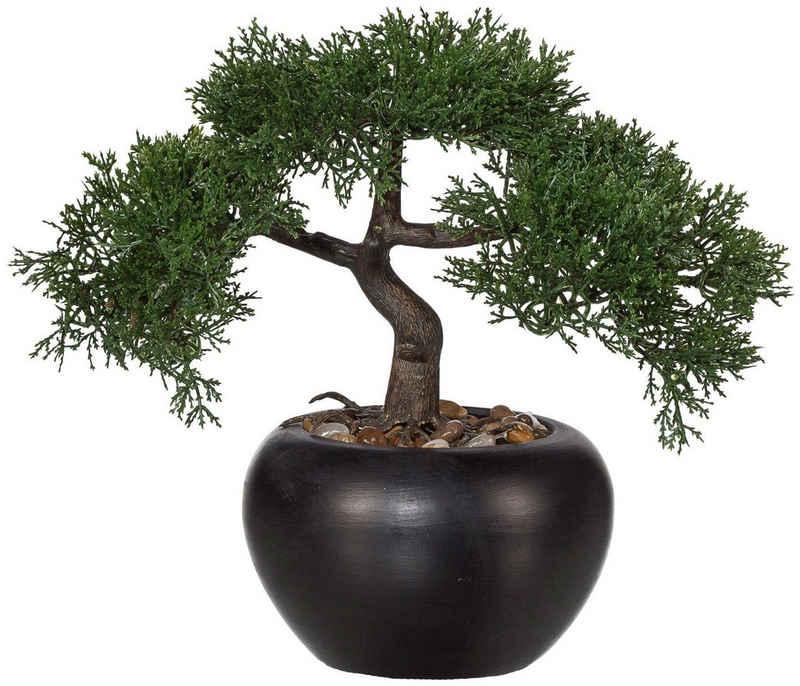 Kunstbonsai »Bonsai Zeder« Bonsai, Creativ green, Höhe 26 cm