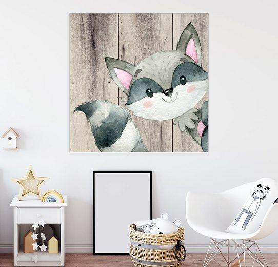 Posterlounge Wandbild, 4 Freunde - Waldtiere, Waschbär