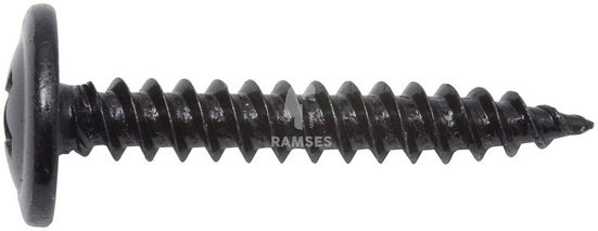 RAMSES Blechschraube, (Set, 100 St), 4,2 x 25 mm