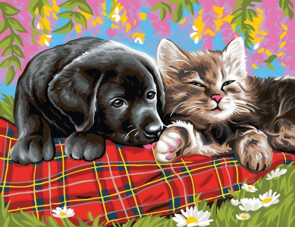 vbs malen nach zahlen »malen nach zahlen hund und katze