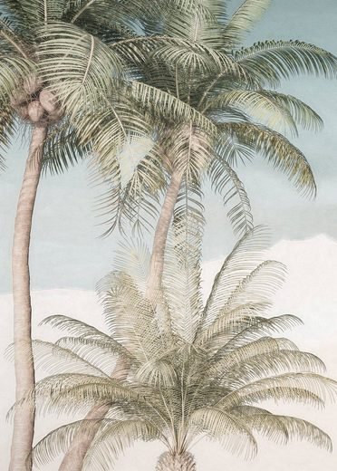 Komar Fototapete »Palm Oasis«, glatt, floral, natürlich, Wald, (Packung)