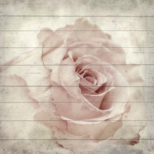 queence Holzbild »Zarte Rose«, 40x40 cm