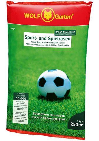 WOLF-Garten Rasensamen »LG 250 Sport- ir Spielrase...