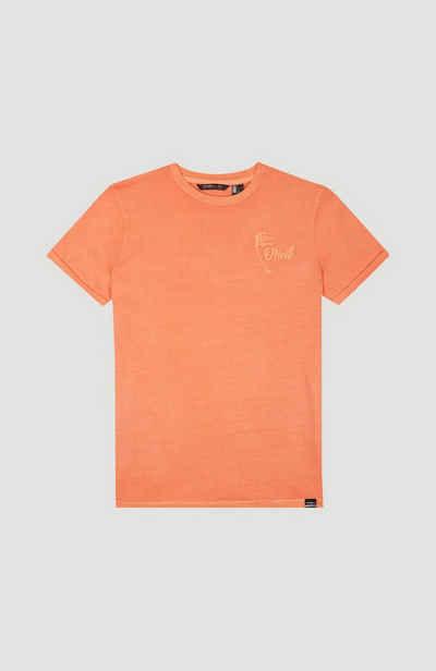 O'Neill T-Shirt »Carter«