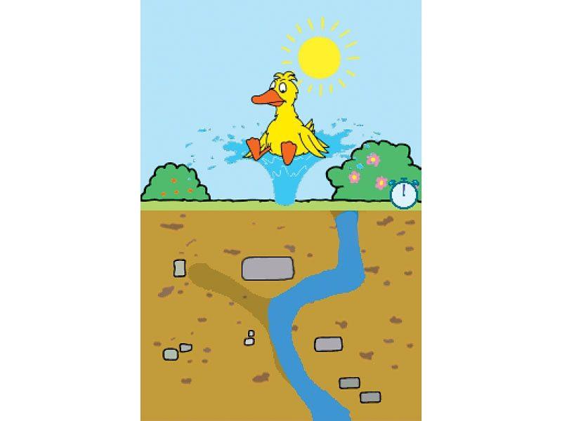 Nintendo DS - Spiel »Maus DS: Der mausgeflippte Denkspaß«
