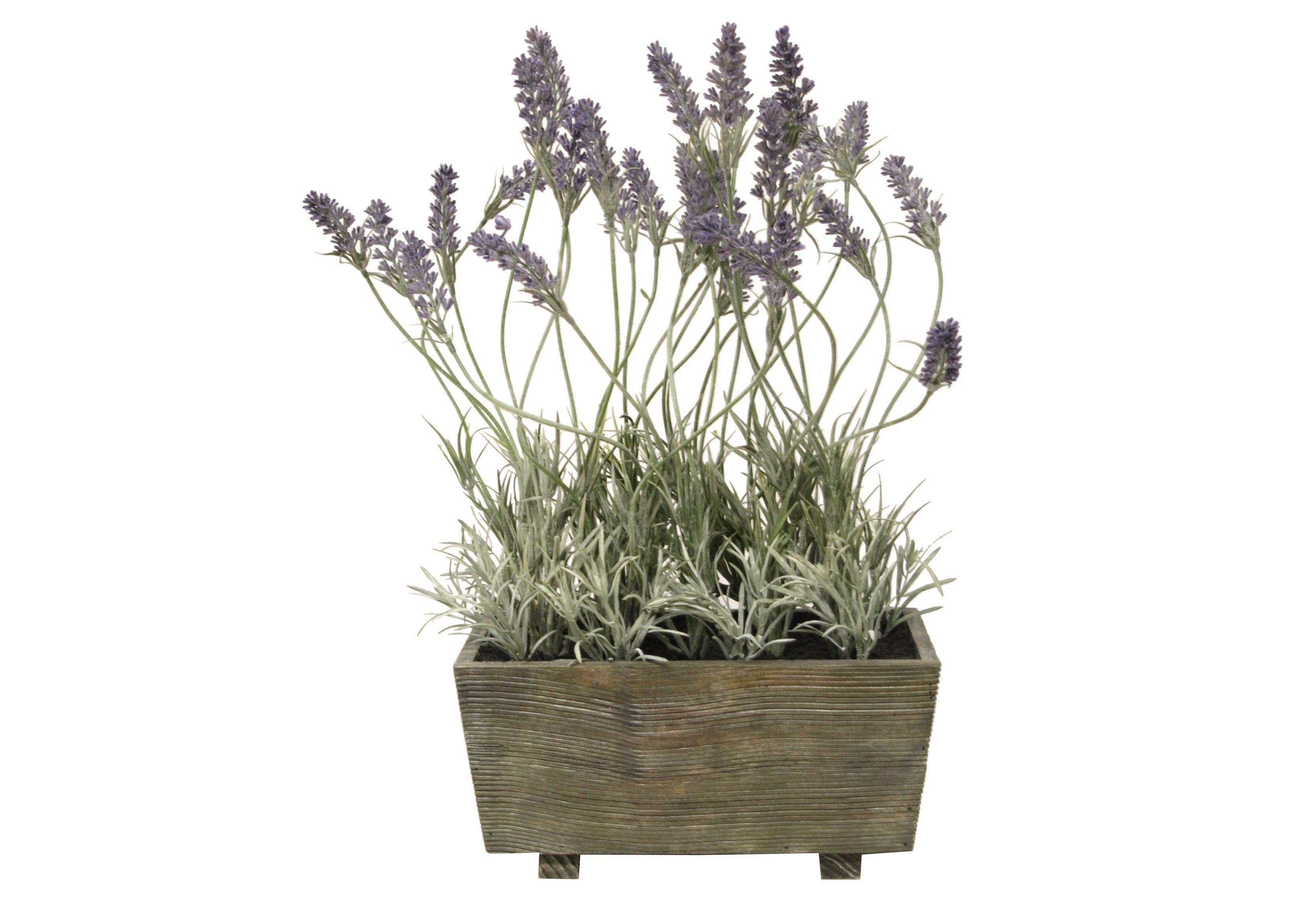 Home affaire Kunstblume »Lavendel«