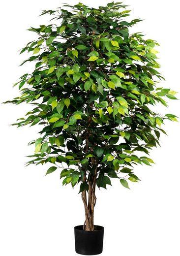 Kunstpflanze »Ficus Benjamini« Kunstbaum, Creativ green, Höhe 150 cm