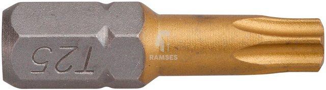 RAMSES Bit-Set , Innenvielzahn TX 15 Größe 15, 20 (Stk.) | Baumarkt > Werkzeug > Werkzeug-Sets | RAMSES