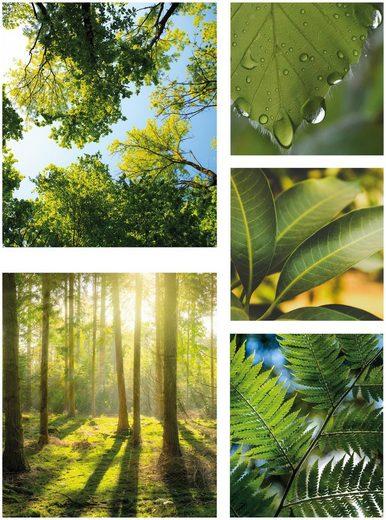 WOHNIDEE-Kollektion Leinwandbild »Pure Natur«, Landschaft (Set)