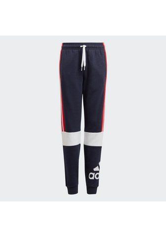 adidas Performance Sportinės kelnės »ADIDAS ESSENTIALS CO...