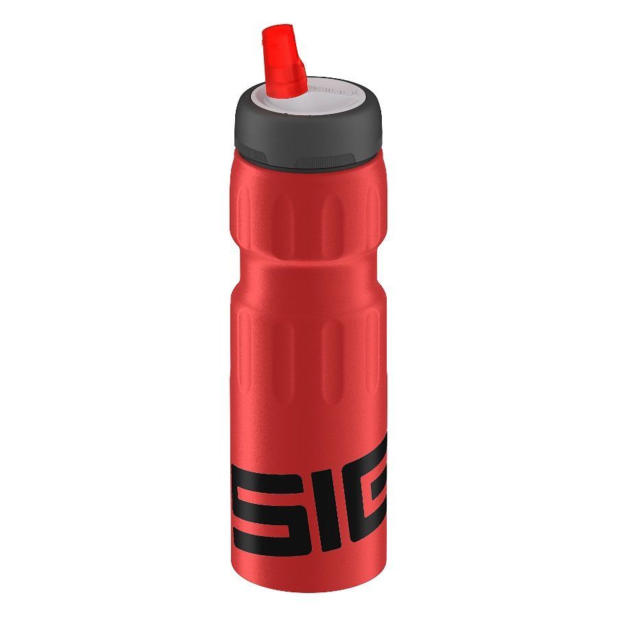 Sigg Trinkflasche »Dynamic Red Touch 750ml«