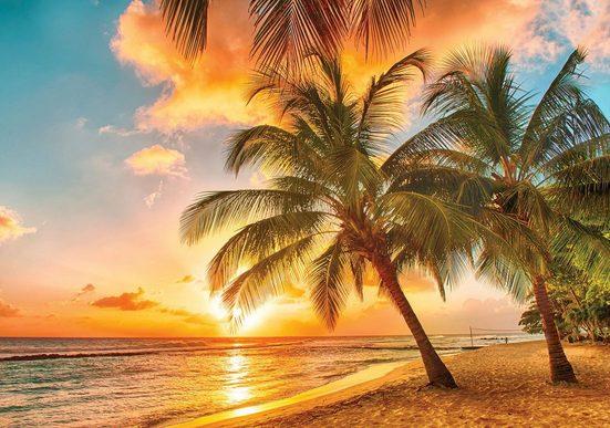 CONSALNET Fototapete »Sonnigen Tropen«, verschiedene Motivgrößen