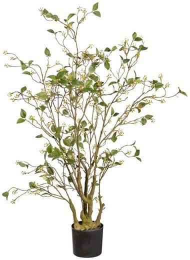 Kunstpflanze »Viburnum«, im Kunststofftopf, H: 120 cm