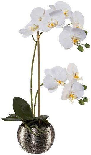 Kunstpflanze »Orchidee Phalaenopsis«, im Keramiktopf, H: 42 cm