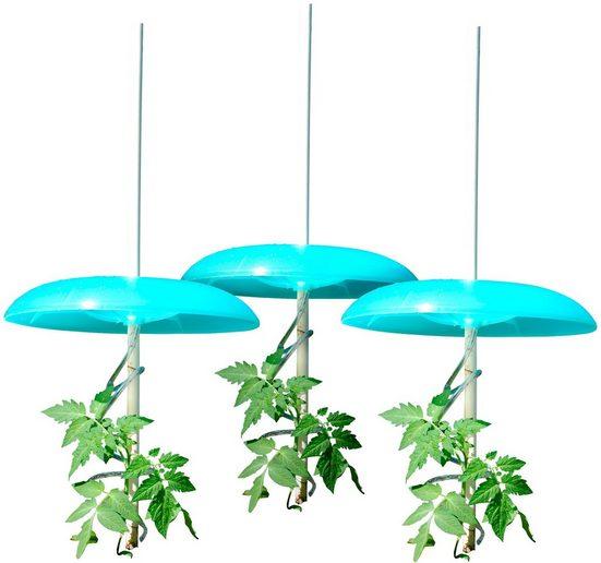 KHW Set: Pflanzenschutzdach »Tomatenhut Basis«, 3 Stk., ØxHöhe: 49x7 cm, inkl. 3 Schläuchen