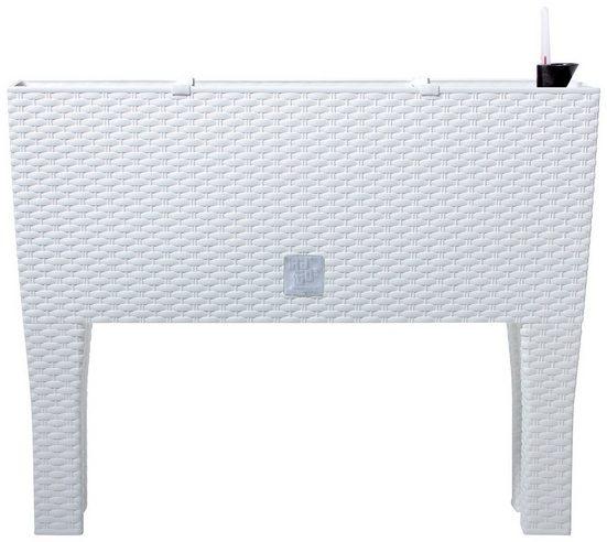 PROSPERPLAST Pflanzkasten »Rato case high«, BxTxH: 80x33x62 cm, weiß