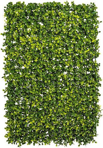 Kunstpflanze »Buchsbaummatte« Buchsbaum, Creativ green, Höhe 60 cm