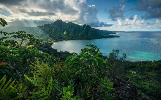 Komar Fototapete »Jurassic Island«, glatt, mehrfarbig, natürlich, bedruckt, (9 St)