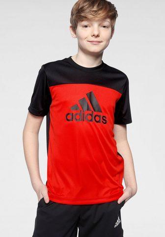 adidas Performance Marškinėliai »EQUIPMENT«