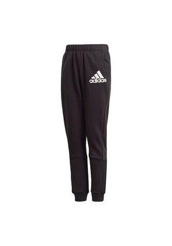 adidas Performance Sportinės kelnės »BADGE OF SPORT«