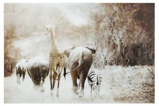 Glasbild Afrikanische Tiere