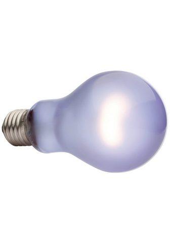Exo Terra »Daytime Heat Lamp« Spezialleuchtmitte...