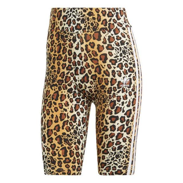 Hosen - adidas Originals Shorts »Radlerhose« ›  - Onlineshop OTTO