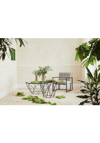 Guido Maria Kretschmer Home&Living Guido Maria Kretschmer Home&Living Kav...