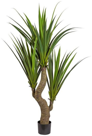 Kunstpflanze »Agave«, Creativ green, Höhe 160 cm