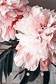 queence Garderobe »Blume«, Bild 1
