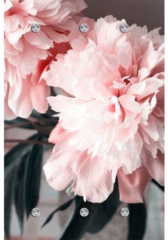 queence Kabykla »Blume«