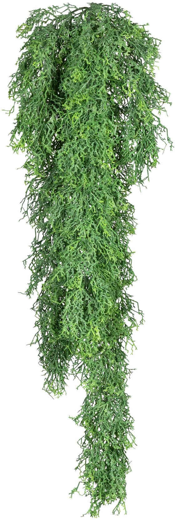 Kunstranke »Russeliahänger« Blatthänger, Creativ green, Höhe 75 cm