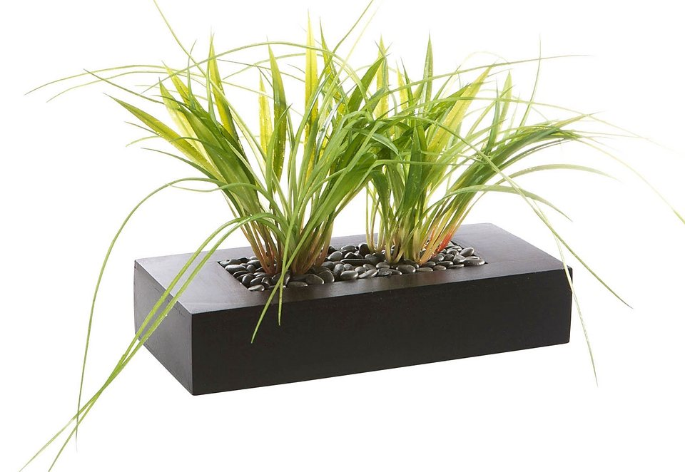 Home affaire Kunstpflanze »Gras« im Holzkasten in grün