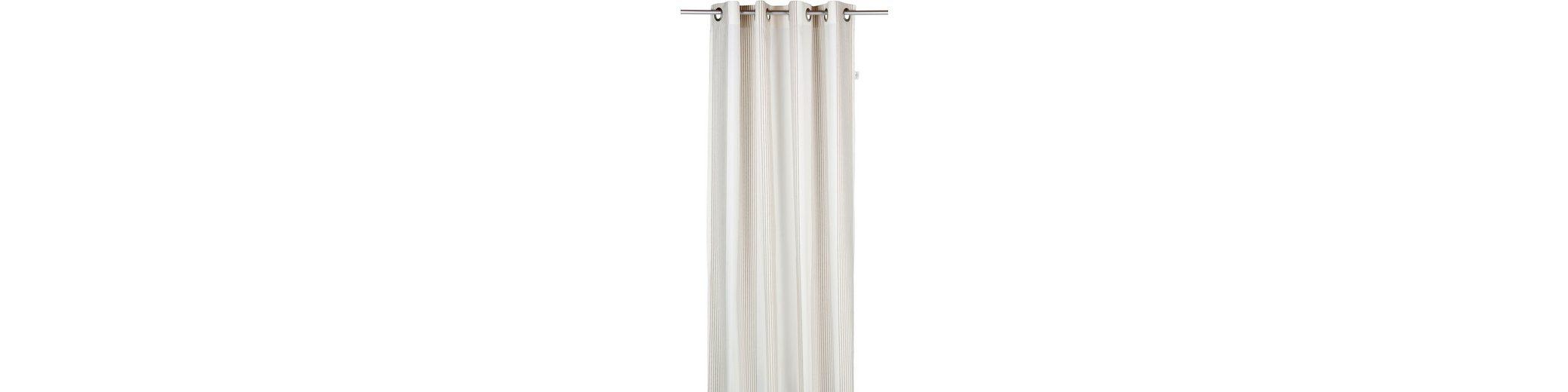 Vorhang, Tom Tailor, »Next Stripes« (1 Stück)