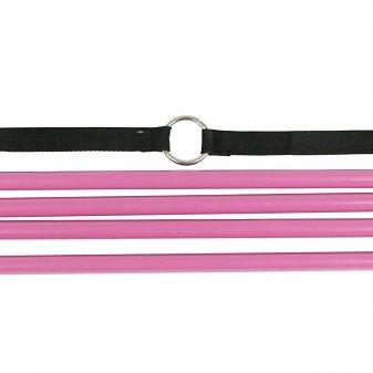 Horze Deckenleiter »Horze Deckenleiter, groß« in Pink
